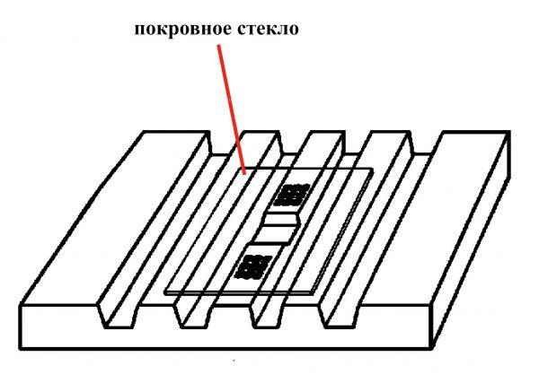 Стекло покровное к камере Горяева уп.100 шт. (21х31х0,45мм)